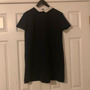 Zara Collared Shift Dress